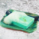 Savon algues sur porte savon