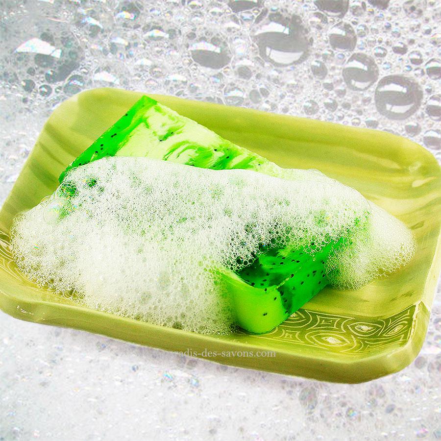 Savon kiwi sur porte savon