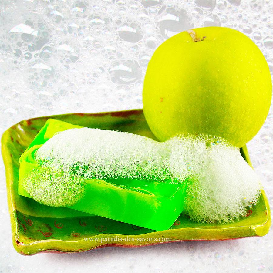Savon pomme porte savon