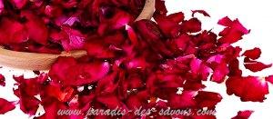 Pétales de roses - utilisation
