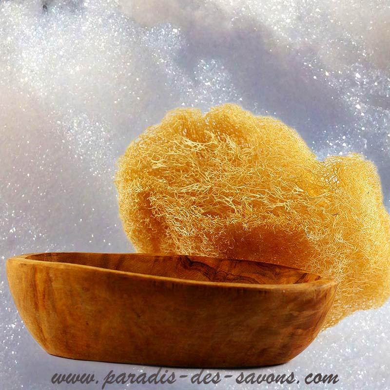 Bois d'olivier porte savon