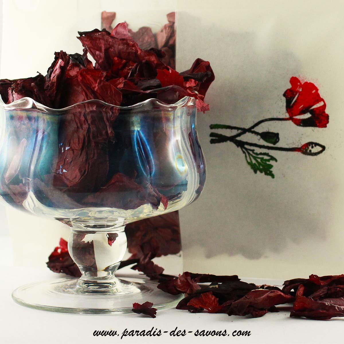 Fleurs de coquelicot séchées