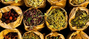 Plantes médicinales Paradis Des Savons